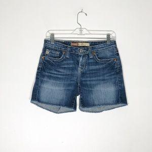 Big Star Denim Shorts Womens 27 Remy Low Rise Fit